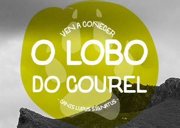 O Lobo do Courel
